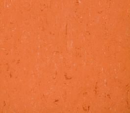 Linoleum a PVC Colorette